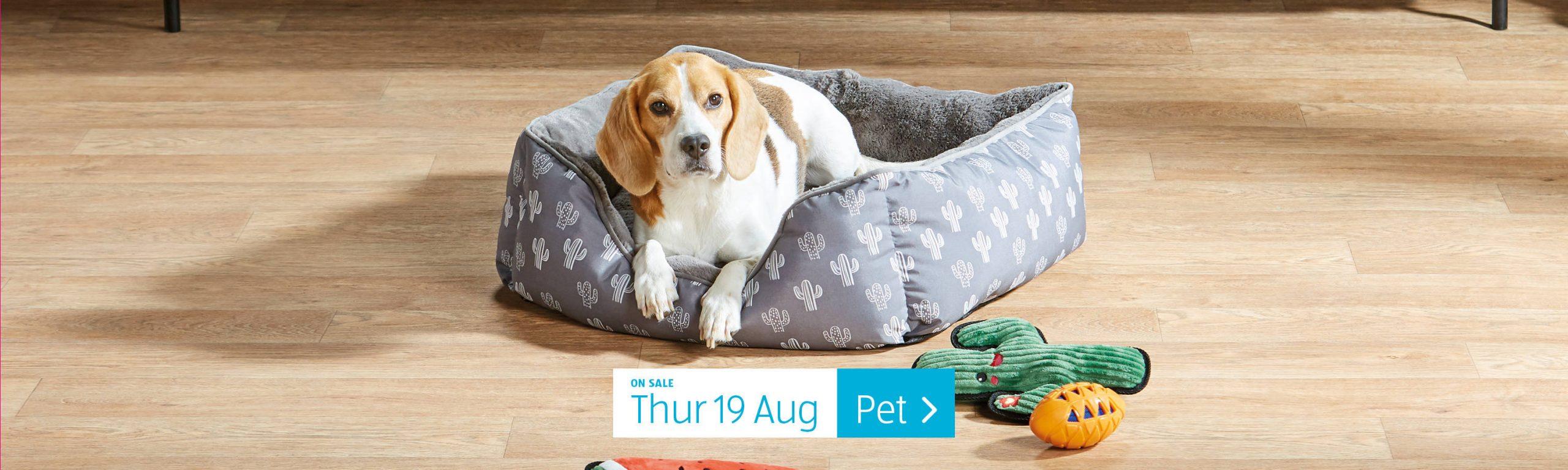 ALDI Pet 19th August 2021 ALDI Thursday Offers